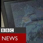 TRA_BBC_TV_2009